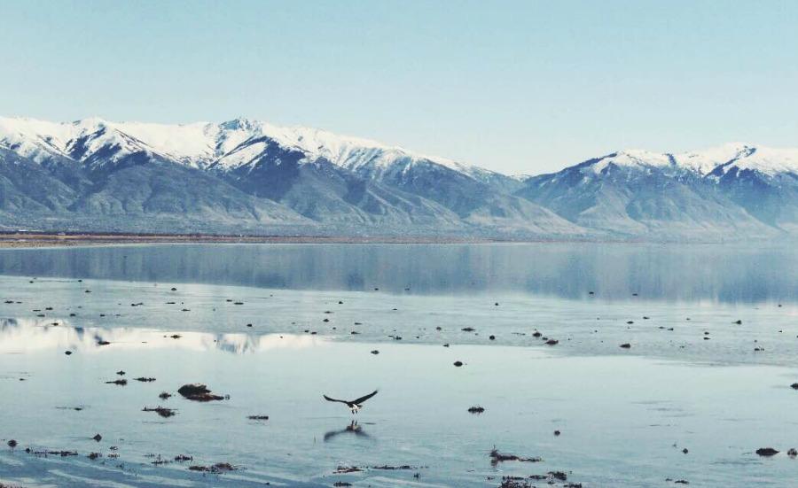 Antelope Island Great Salt Lake