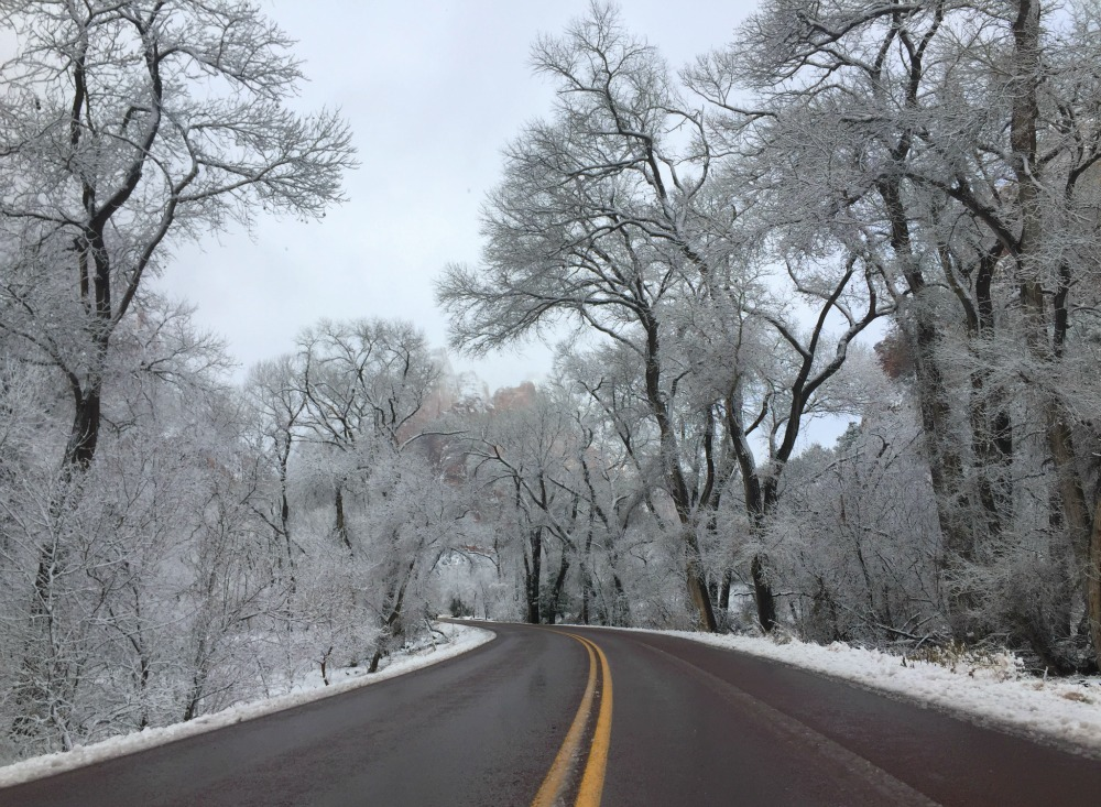 Zion Snow