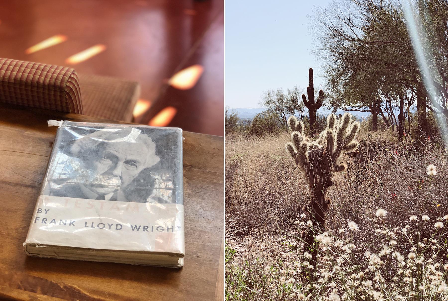Frank Lloyd Wright AZ